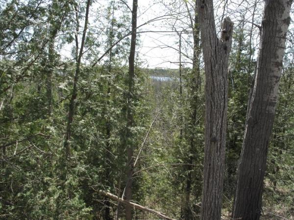 Winding Tree description