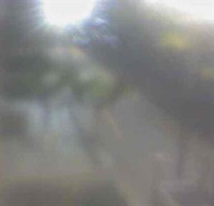 13149081-df5e-4c18-b6a2-5cdf66bf763f_d.png