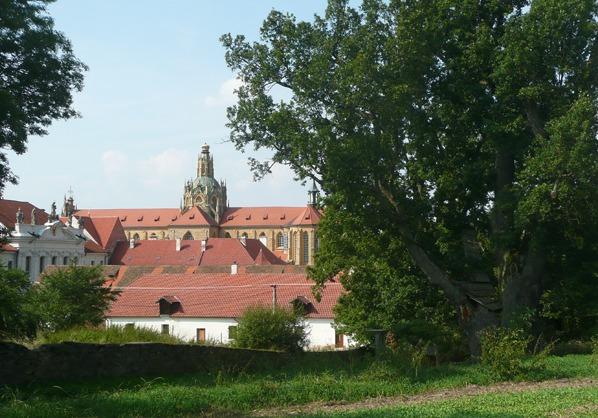Duby nad Pozorkou - dolní s kostelem