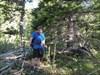 RedRouge Bushwacking log image