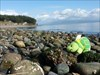 Barney at the rocky beach