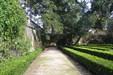 Jardim Botanico 1