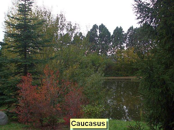 Kaukaz/Caucasus