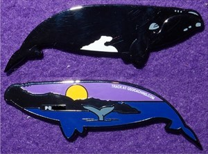 For Sale / Trade: Northern Right Whale