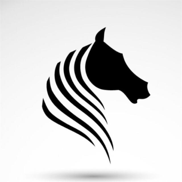 avatar de amélie nounet