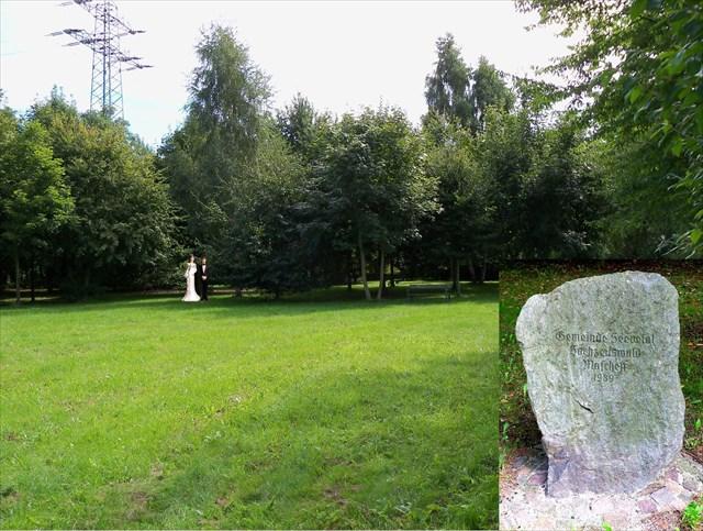 Maschener Hochzeitswald