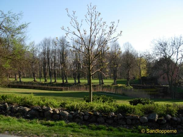 Parken set fra vejen