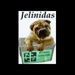 jelinidas
