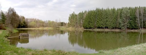 Pohled na rybník Žabka