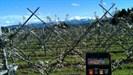 ...Aussicht von Berg TG Richtung Alpstein....