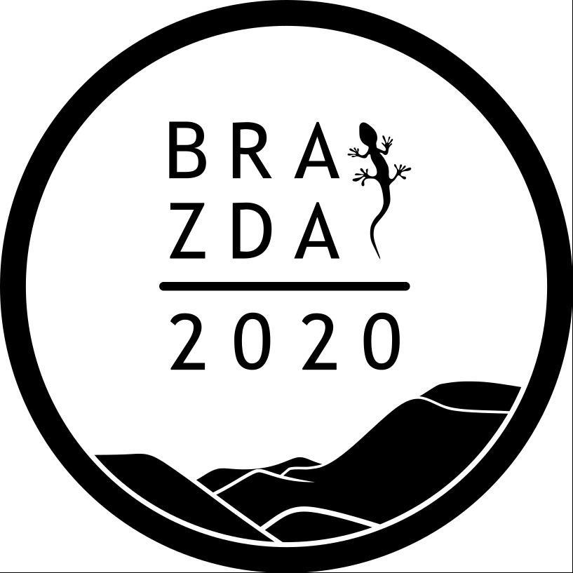 BRAZDA 2020