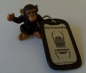 ...mich laust der Affe on Tour