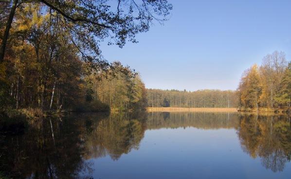 Podzimní Oborák od hráze