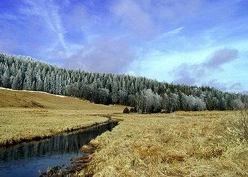 Kvildský potok pod Lapkou