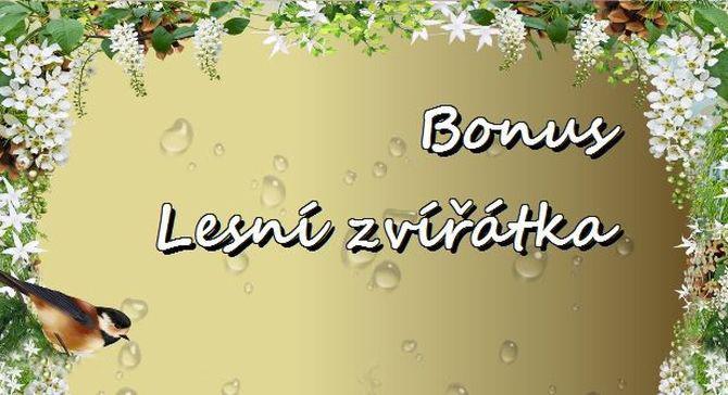 Bonus Lesní zvířátka-TOP
