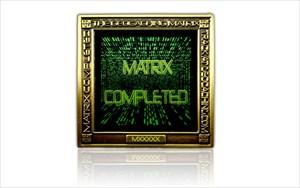 swama Matrix 1