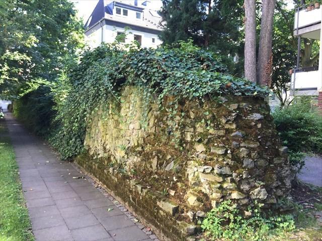 Zugewachsene Stadtmauer