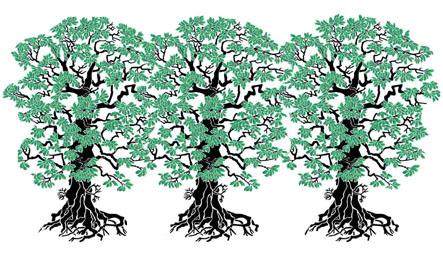 Трафареты Листья деревьев Дрофа-Медиа.