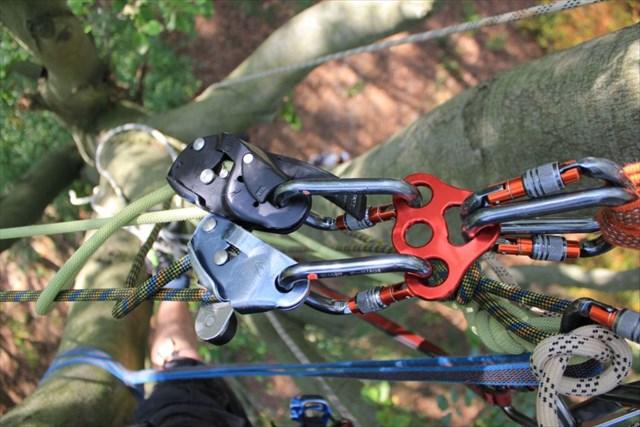 Kletterausrüstung T5 : Kletterausrüstung geocaching baumklettern für