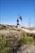 Terracotta Warrior meets TUIT geocoin in desert