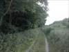 Debreceni nagyerdo útközben