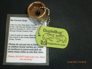 Florida Finders Fest 10 DupleBug