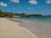 A beautiful Martinique beach log image