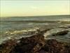 Pau da Maré de Buarcos [Figueira da Foz]-5