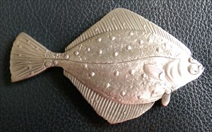 Scholle Silver Front