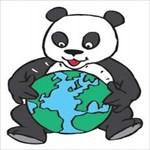 pandabeertje
