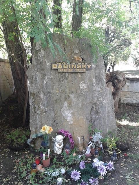Znalezione obrazy dla zapytania loupeznik babinsky