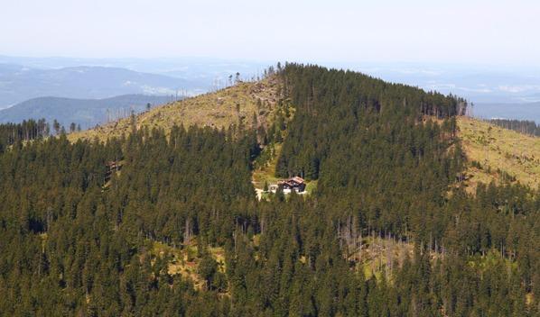 Malý Javor aChamer Hütte