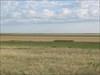 Nearby rangeland