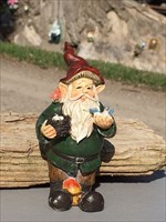 Gnome #22 Loves Birds