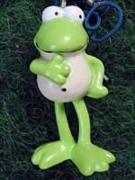 Brokki's Frosch