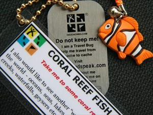 Coral Reef Fish - new look