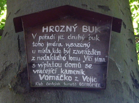 AWFUL BEECH. The second beech of this name, which was planted next to the place where a stonecutter Vomacko from Vojice, carrying his wages, was killed during his return from nearby stonepit Wolfish Pit.