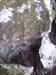 Gingkoblatt-Gipsschlotte log image