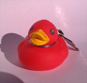 othc.m´s Speedy Duck
