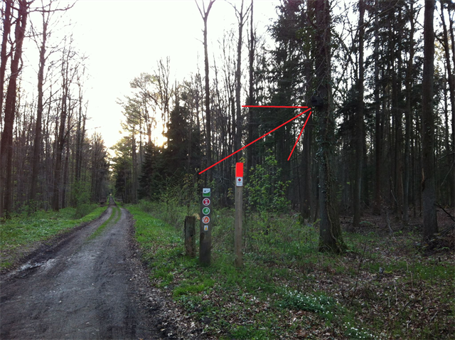 http://imgcdn.geocaching.com/cache/large/2beee621-9fb9-4d55-aa29-4ad78ddd71fe.png