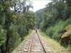 Linha do Tua (88)