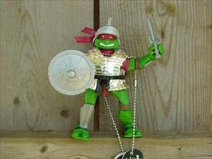 Turtle Knight