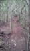 Trilho 8 log image