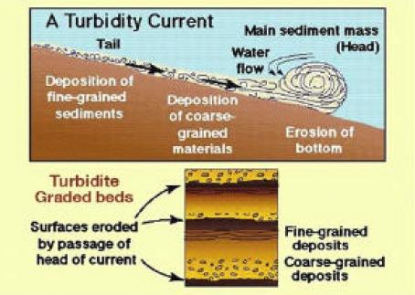 AAPG Datapages/Archives: Stratigraphic and Combination ...