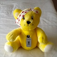 Caching Pudsey on his Birthday