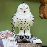 Hedwig die Scheeeule