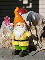 Gnome #14