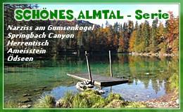 Banner: Schönes Almtal - Serie