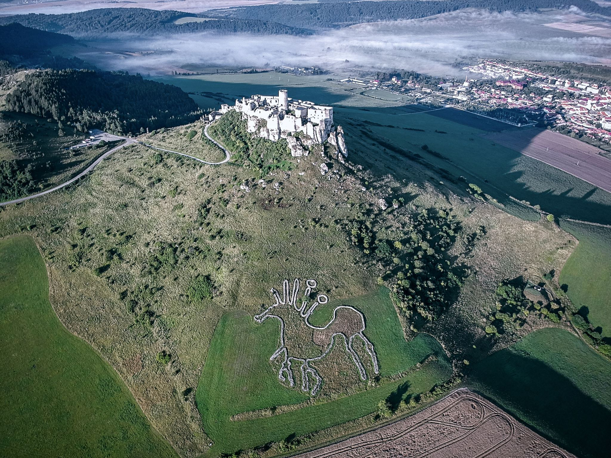 Spiš Castle - bird perspective