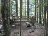 Übungsplatz für Wilderer